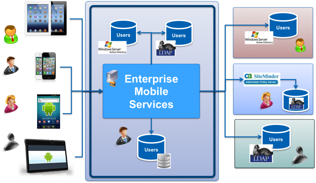 Complexity of Enterprise Mobile Services Environment